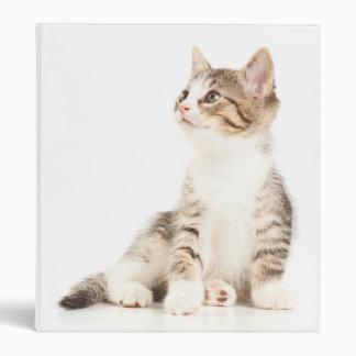 Kitten 3 Ring Binders