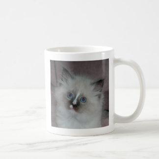 Kitten 4 Mug
