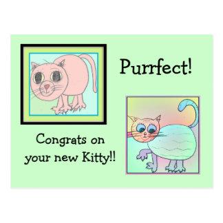 kitten adoption card. postcards