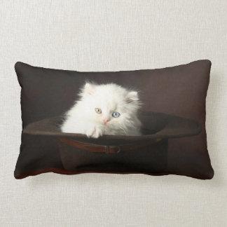 Kitten American MoJo Pillow