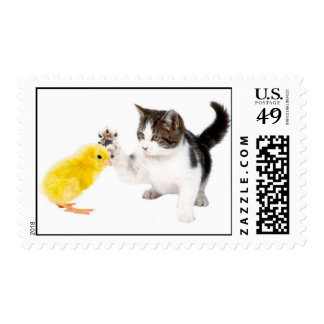 Kitten and baby chick postage