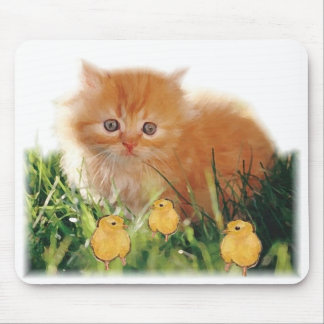Kitten and baby chickens mouse pad