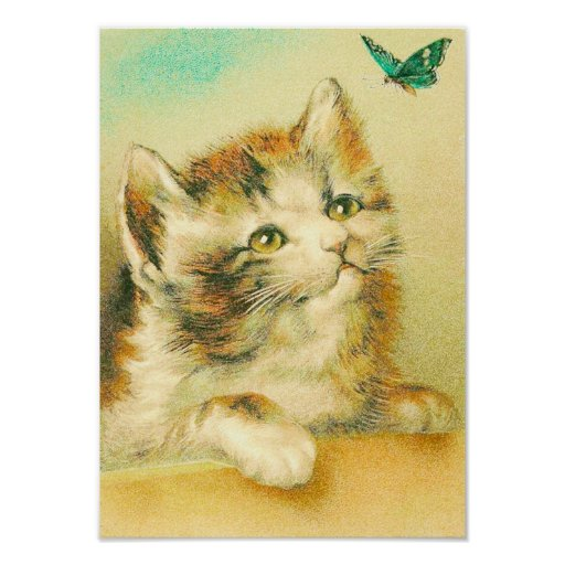 Kitten And Butterfly Vintage Poster