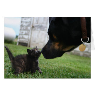Kitten and dog encouragement greeting card