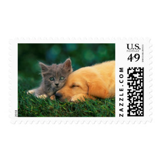 Kitten and Dog Friends stamp