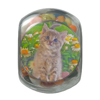 Kitten and Flowers Glass Jars