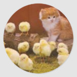 Kitten and Fluffy Chicks Classic Round Sticker
