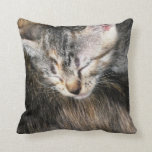 Kitten and Mom Pillows