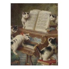 Kitten And Piano Postcard at Zazzle