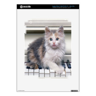 Kitten And The Piano Skins For iPad 3