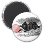 Kitten and the Yarn 2 Inch Round Magnet