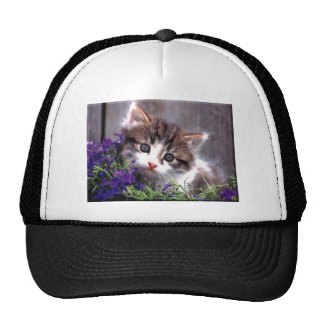 Kitten And Violets Trucker Hat