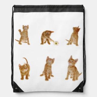 Kitten Antics Backpack