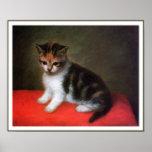 Kitten Art Poster Print - Art by George Stubbs