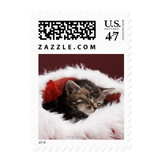 Kitten asleep in Christmas hat Postage