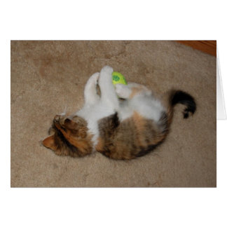 Kitten at Play with Tennis Ball Card