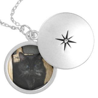 Kitten Basket Locket Necklace