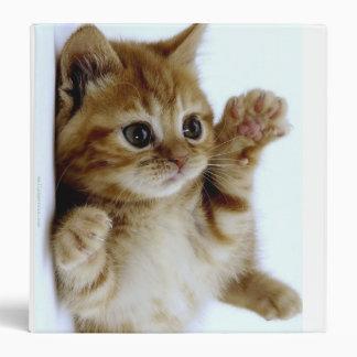 Kitten Binder