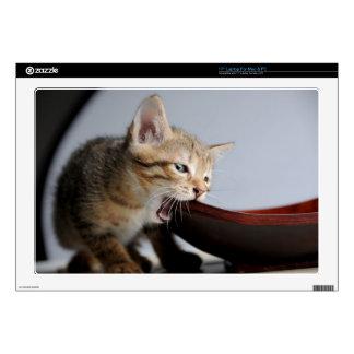 Kitten Biting Wooden Plate Laptop Skin