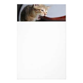 Kitten Biting Wooden Plate Stationery