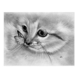 Kitten Butterfly Postcard