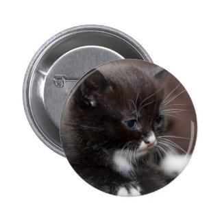 Kitten Button