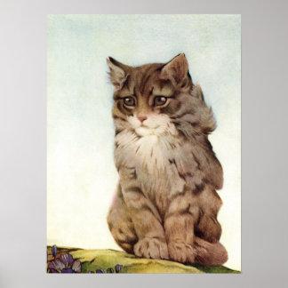 Kitten by E. J. Detmold Poster