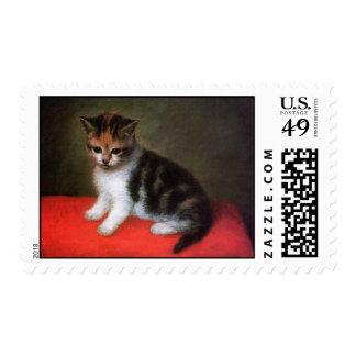 Kitten by Stubbs: Cat Postage Stamps: Medium Size
