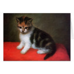Kitten Card!  Vintage Cat Art by George Stubbs
