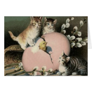 Kitten Cat Easter Chick Colored Painted Egg Greeting Cards