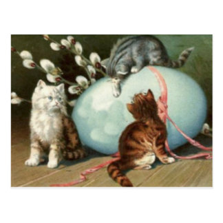 Kitten Cat Easter Colored Painted Egg Postcard