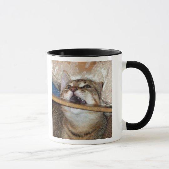 Kitten Chomp Mug