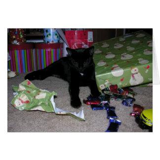 Kitten Christmas Card
