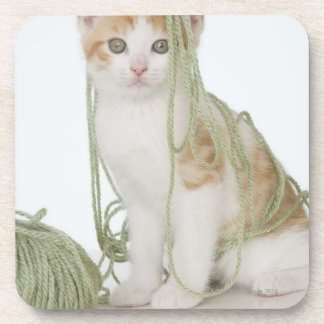 Kitten covered in yarn drink coaster