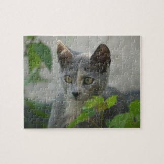 """Kitten Curiosity"" Jigsaw Puzzles"