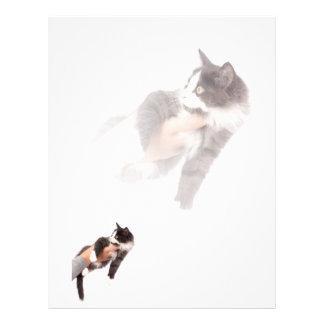 kitten customized letterhead