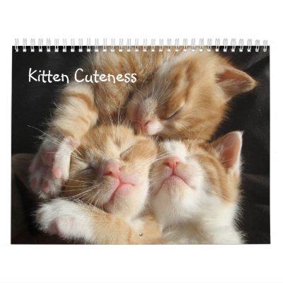 Kitten Cuteness Calendar