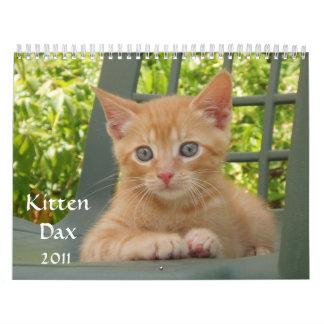 Kitten Dax 2011 Calendar