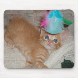 Kitten Dax & Feathers Mouse Pad