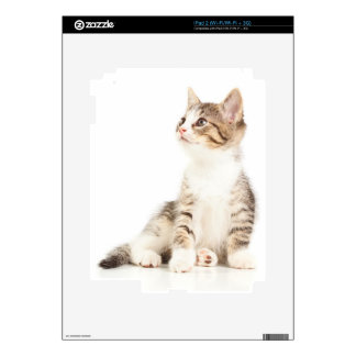 Kitten Decal For The iPad 2
