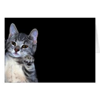 Kitten Digital Oil Painted Card