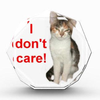 Kitten Doesnt Care Acrylic Award