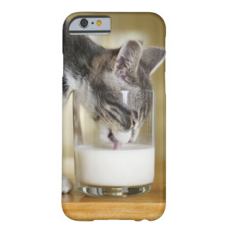 Kitten drinking milk from glass barely there iPhone 6 case