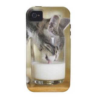 Kitten drinking milk from glass Case-Mate iPhone 4 cases