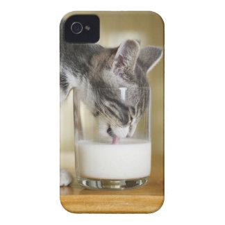 Kitten drinking milk from glass iPhone 4 cases