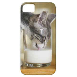 Kitten drinking milk from glass iPhone 5 cases