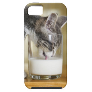 Kitten drinking milk from glass iPhone 5 covers