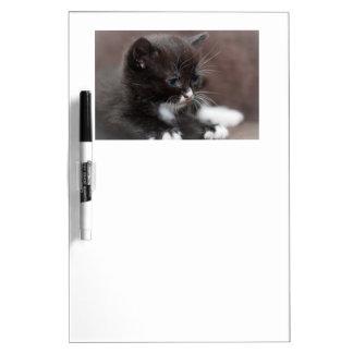 Kitten Dry wipe board Dry Erase Whiteboards