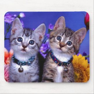 Kitten Duo Mouse Pad