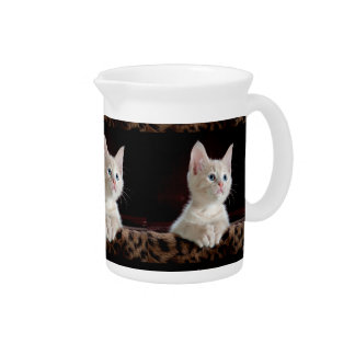 KITTEN: ENTRANCING MOMENT ~ DRINK PITCHER